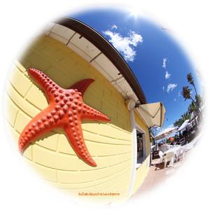 Bagni stella marina